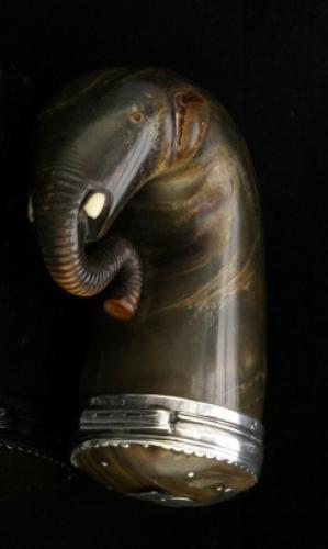 Scottish Horn snuff mull, in elephant form