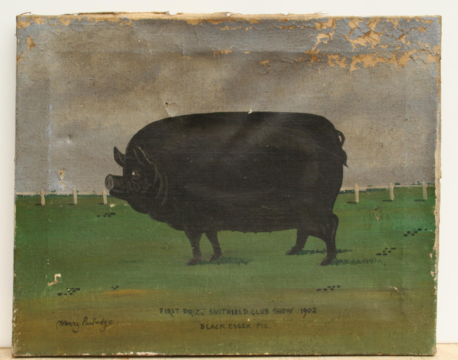 Naive oil painting of a Pig, dated 1902.