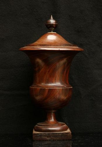 Lignum Vitae 19th century Urn / caddy