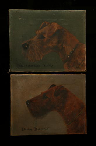 Primitive Pair of Dog (Terrier) oil paintings