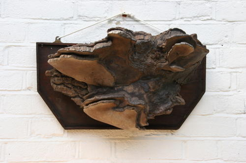 Fungus Bracket 19th century