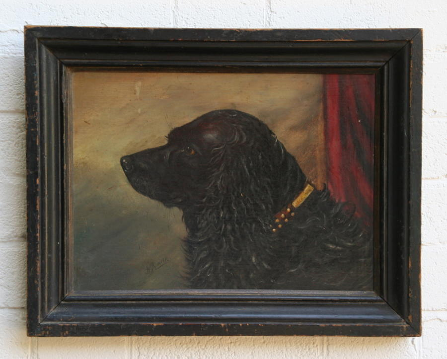 Naive Dog Portrait 1900.
