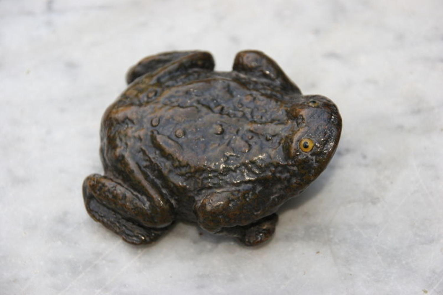 Frog Snuff Box Paper Mache 19th century