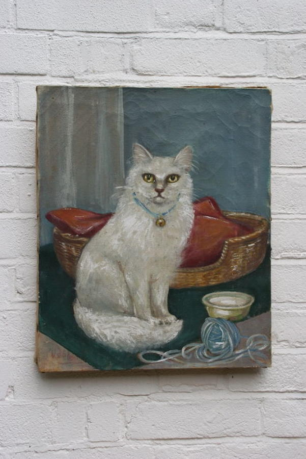 Cat portrait, oil on canvas, early 20th century