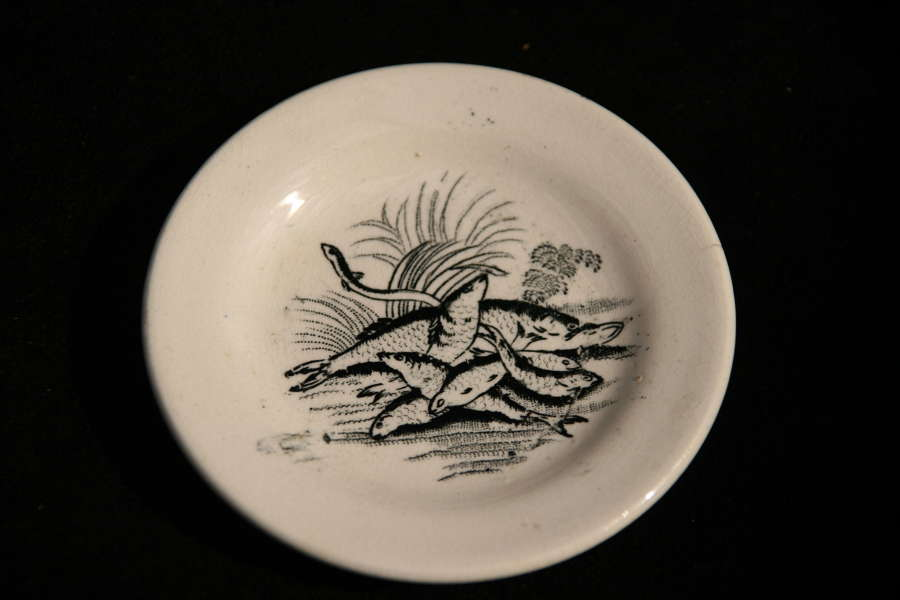 19th century Childs plate with fishes