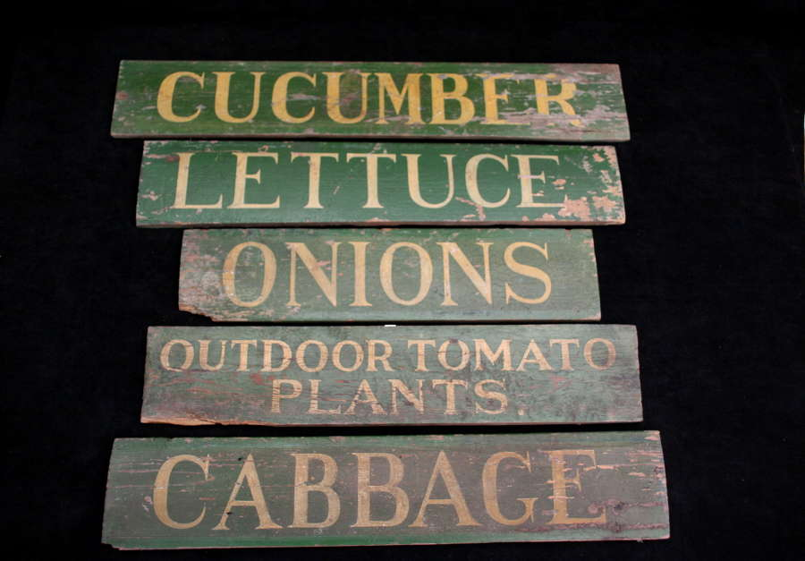 5 x Garden Nursery Vegetable Plant Signs 20th century