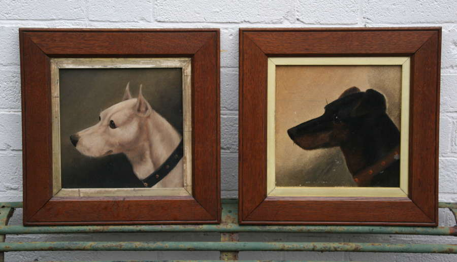 2x Dog Portraits late 19th century