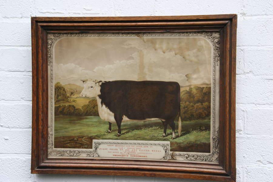Naive Bull pictorial framed advertising Print Thorley's food