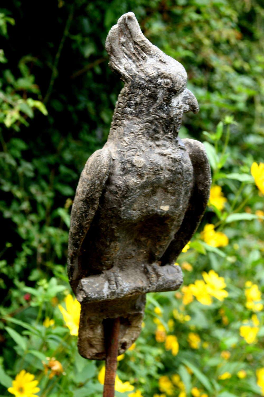 Victorian Lead Parrot