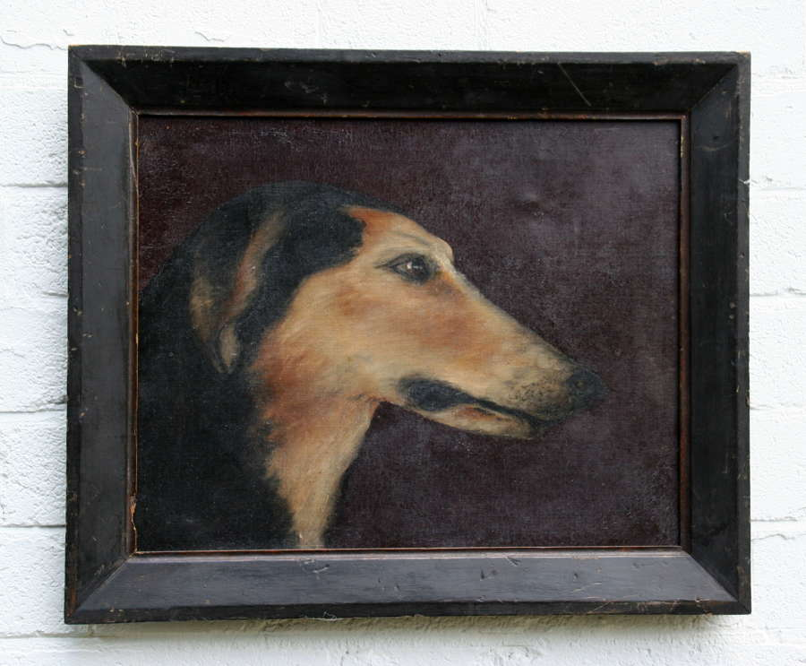 Saluki Dog Portrait 19th century