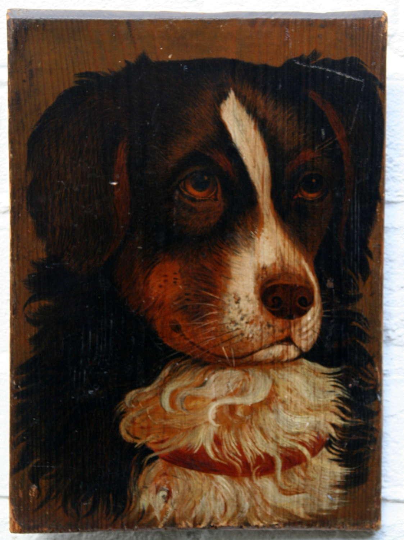 Dog portrait 19th Century, Oil on panel