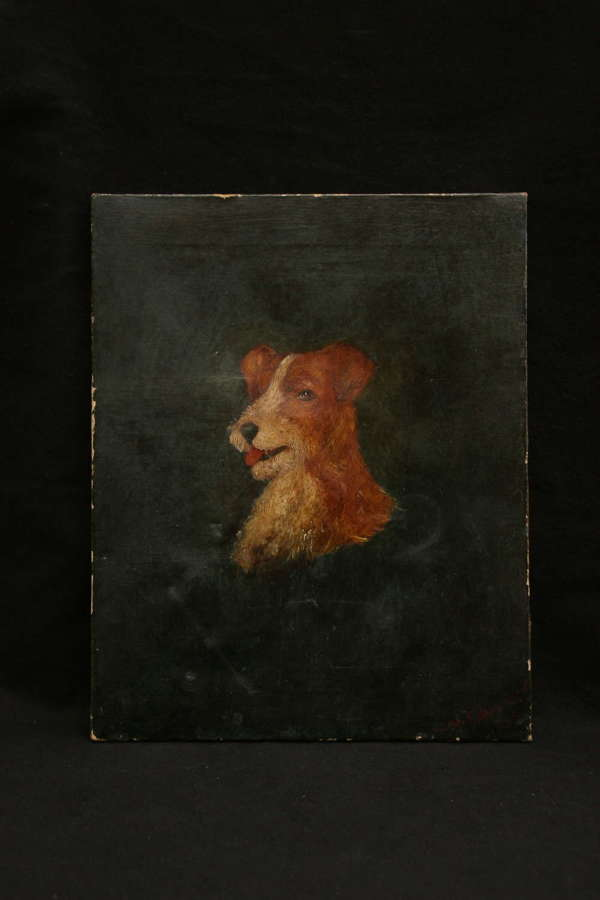 Terrier Portrait, oil, late 19th / early 20th.
