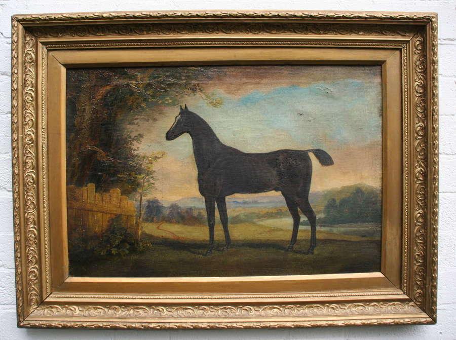 Naive Horse Portrait 19th century oil on Canvas.