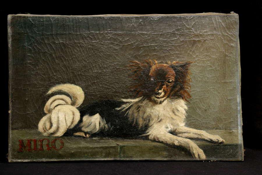 Miro, Dog 19th century Portrait