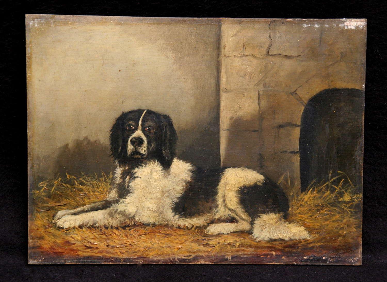 19th Century Dog Portrait