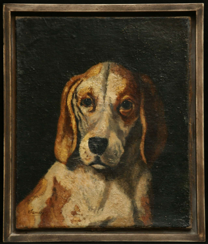 Hound Portrait  Framed 20th century