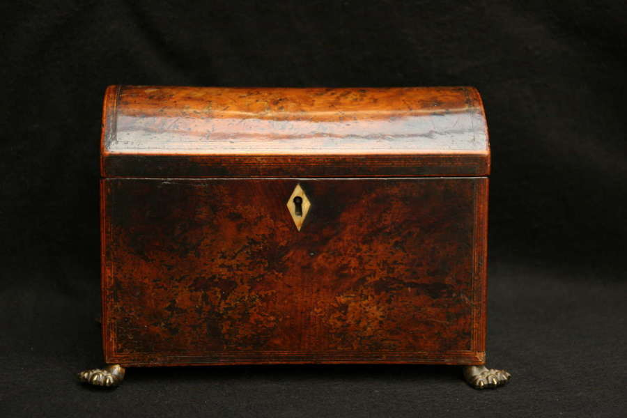 Yew dome lidded , twin compartment Tea Caddy, early 19th century